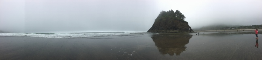 Screw You, Cancer –  I went to Neskowin, Oregon – June 2017